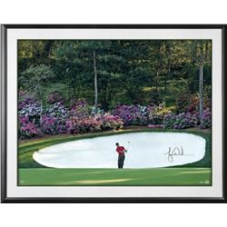 "Tiger Woods Signed ""Azalea"" 30x40 Custom Framed Photo (UDA COA)"
