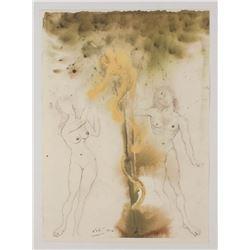 """Salvador Dali LE """"Vol. 2 The Biblia Sacra: Peccatum Originis 1967 Rizzoli Editions Italy"""" 14x19 Lith"""
