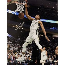 Giannis Antetokounmpo Signed Bucks 16x20 Photo (JSA COA)