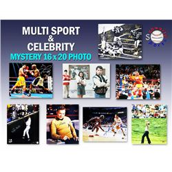 Schwartz Sports Multi Sports  Celebrity Signed Mystery 16x20 Photo - Series 5 (Limited to 150)