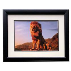 "2019 The Lion King ""Circle of Life"" 16x18 Custom Framed Photo Display"