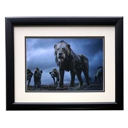 "2019 The Lion King ""Scar on Pride Rock"" 16x18 Custom Framed Photo Display"