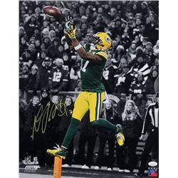 Davante Adams Signed Packers 16x20 Photo (JSA COA)