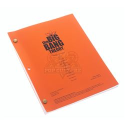 Big Bang Theory, The (TV) - Production Script – VI891