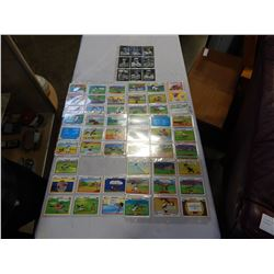 LOT OF LOONEY TOON CARDS AND BASEBALL REPRINT CARDS