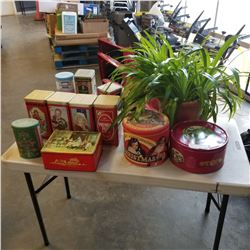 LOT OF COLLECTOR TINS AND PLANT