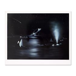 Orca Starry Night by Wyland