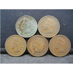 1895 1896 1897 1898 1899 Indian Head Cents.