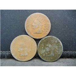 (3) 1857 Indian Head Cents