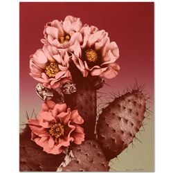 Prickly Pear by Trenton, Lee