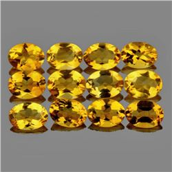 Natural Golden Yellow Citrine 12 Pcs {Flawless-VVS1}