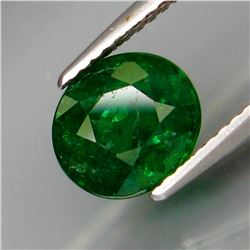 Natural Top Green Tsavorite Garnet 2.58 Cts