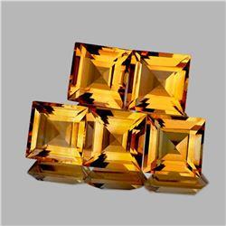 NATURAL GOLDEN YELLOW CITRINE 6 MM 5 Pcs - FL