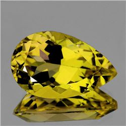 Natural Golden Yellow Beryl (Heliodoor) 12x8 MM - FL