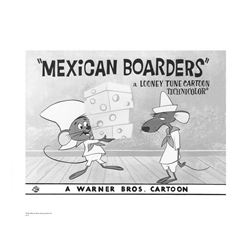 Warner Brothers Hologram Mexican Boarders