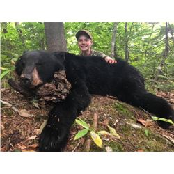 North Road Outfitters - Maine black bear hunt for 2 hunters