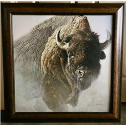 Robert Bateman Buffalo Canvas Print