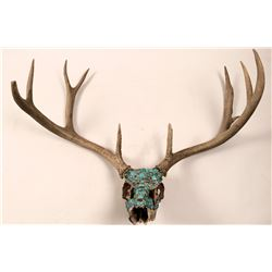 Turquoise and Coral Encrusted Mule Deer Skull  (93145)