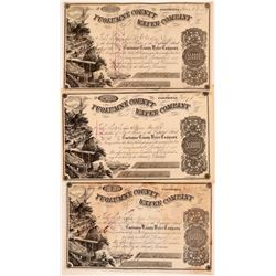 Three Gold Rush Era / D. O. Mills related Tuolumne County Water Company Stock Certificates with icon