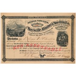 Maysville Mining & Smelting Co. of Chaffee Co. Colorado, 1880  (111347)