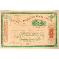North Star Gold & Silver Mining Co. Stock, Colorado Territory, 1866  (112823)