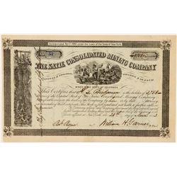 Katie Consolidated Mining Company, Colorado, 1882  (111378)