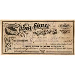 New York Mining Company Stock, Gold Hill, Nevada, 1879  (111354)