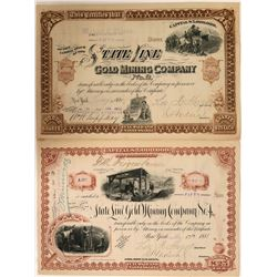 State Line # 2 and # 4 Stock Certificates, Gold Mountain District, Esmeralda County, Nevada  (110933