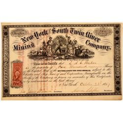 New York & South Twin River Mining Company Stock Certificate  (107773)