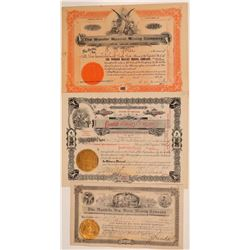 Rawhide Mining Certificates Group  (110826)