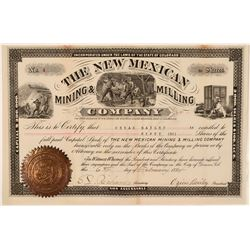 The New Mexican Mining & Milling Co Stock, Burro Mts. New Mexico  (111360)