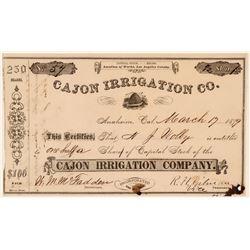 Cajon Irrigation Co. Stock Certificate, 1879  (111336)