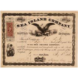 Sea Island Company Stock Certificate, New York, 1866  (111346)