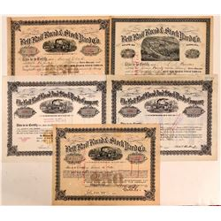 Belt Rail Road & Stock Yard Co. Stock Certificates (5)  (111056)