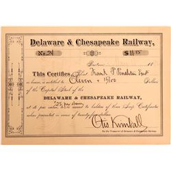 Delaware & Chesapeake Railway Stock Scrip, 1882  (111044)