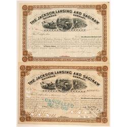 The Jackson, Lansing and Saginaw Railroad Co.   (110013)