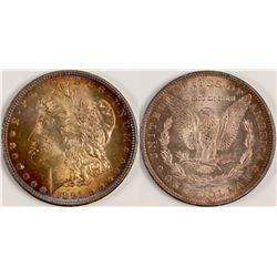 1891-CC Gem Morgan Dollar  (108130)