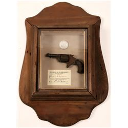 Colt New Line Pocket revolver in a Railroad Shadowbox  (110409)