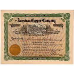American Copper Company Stock Certificate  (107791)