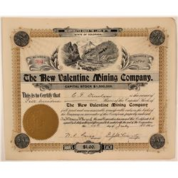 New Valentine Mining Co Stock Certificate, Colorado, 1902  (111355)