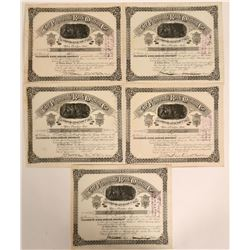 Plymouth Rock Mining Co. Stock Certificates, Silver City, New Mexico  (109178)