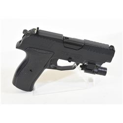 Iceman Pellet Gun