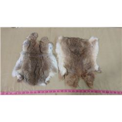 TWO BROWN RABBIT PELTS