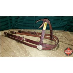 CHOICE OF 10 HEAD STALLS : Brown