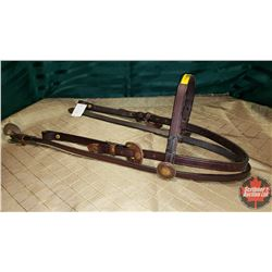 CHOICE OF 10 HEAD STALLS : Black