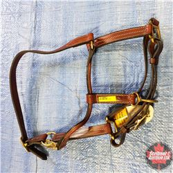 "CHOICE OF 4 Halters :   1"" Three in One Snap Halter"