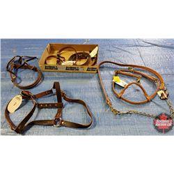 "Tray Lot - Weaver Items: 1"" Horse Halter, Headstall, Tiedown, Noseband, Rein 5/8x8, Stud Chain w/Lea"