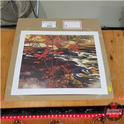 Group of 7 Limited Edition Print : The Red Maple 513/777