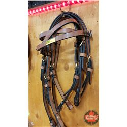 Headstalls (3) : Star Concho's