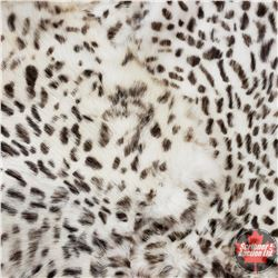 Exotic Spotted Rabbit Skin Pelts (14)